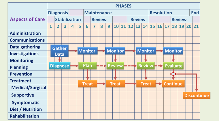 Phases of Care