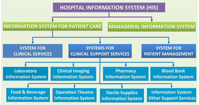 INFORMATION SYSTEMS IN HEALTH CARE - Health Care Service ...