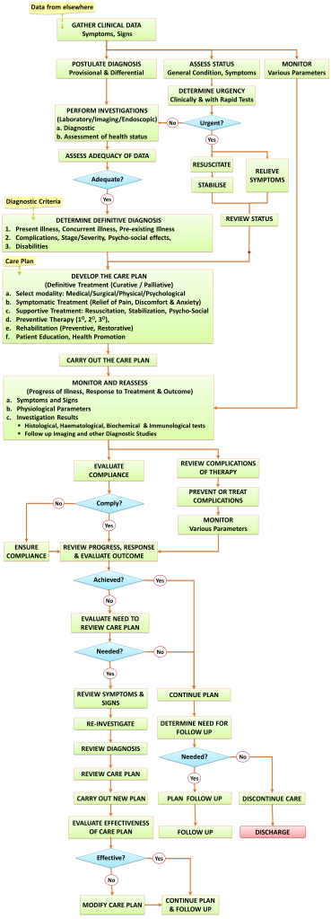 Clinical Workflow