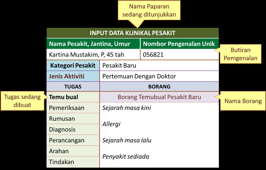 Input data Pesakit